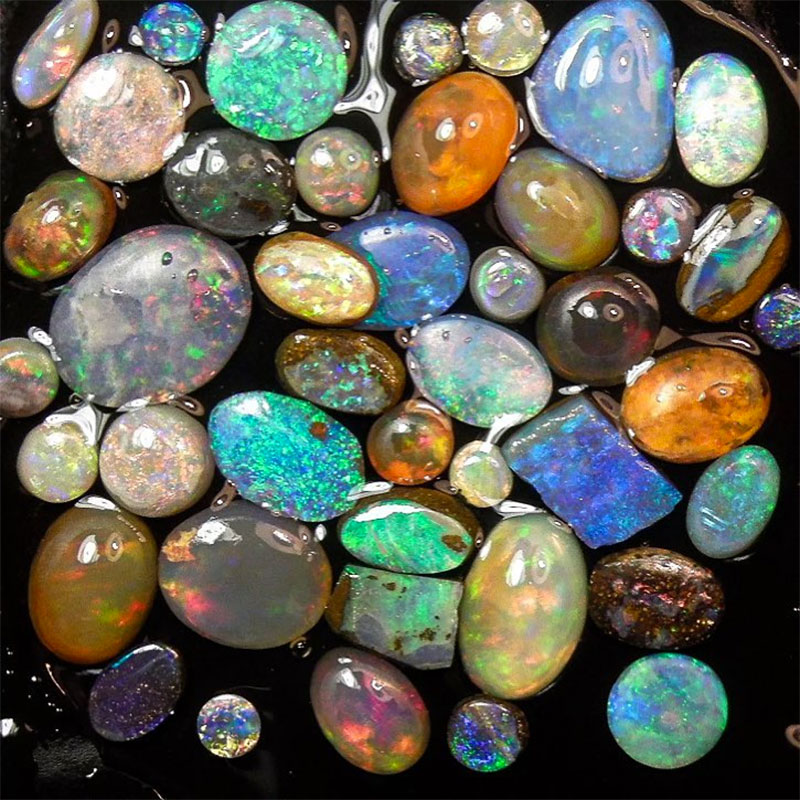 Instagram Accounts for Opal Lovers