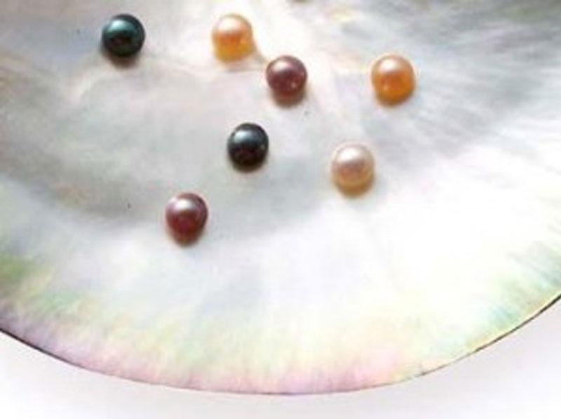 Seed Pearls