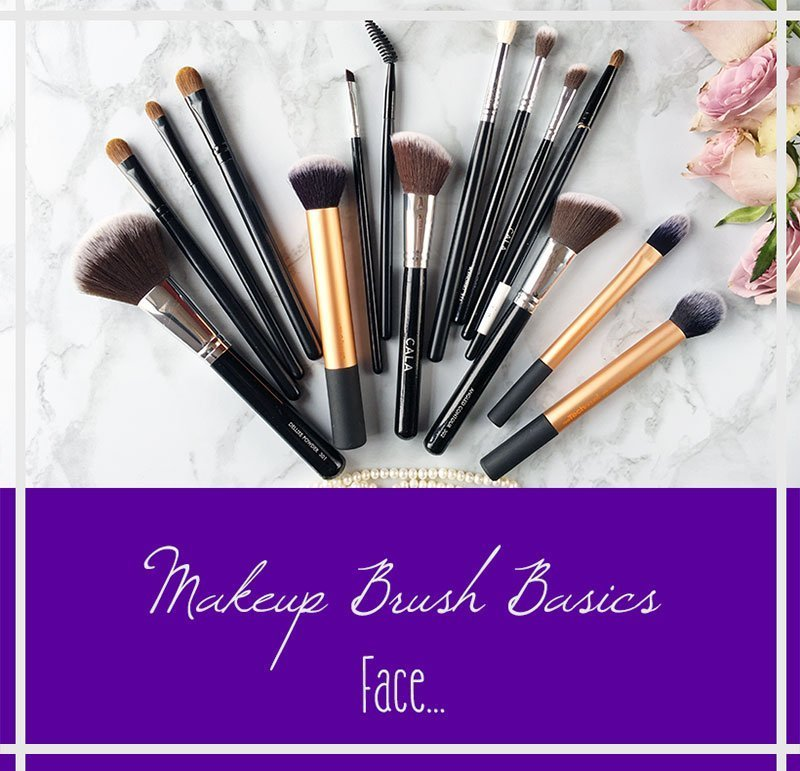 Makeup Brush Basics Face