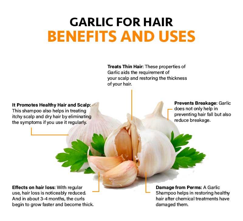 Garlic Shampoo Benefits For Hair Growth And Stop Hair Loss