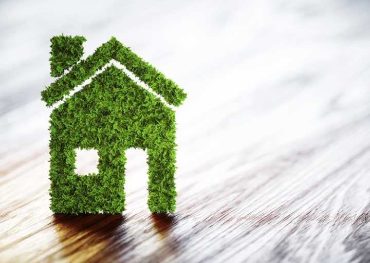 How to Go Green at Home: 7 Basic Tips