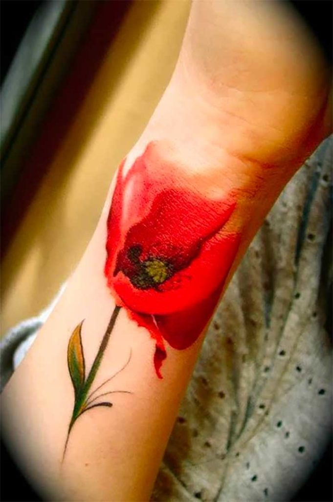 Poppy watercolor tattoo pictures